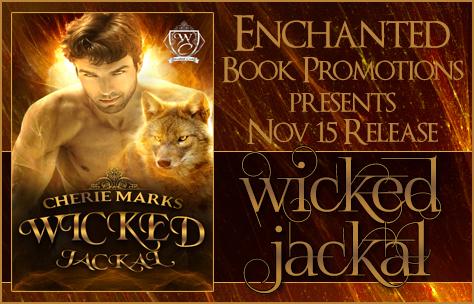 wickedjackalbanner